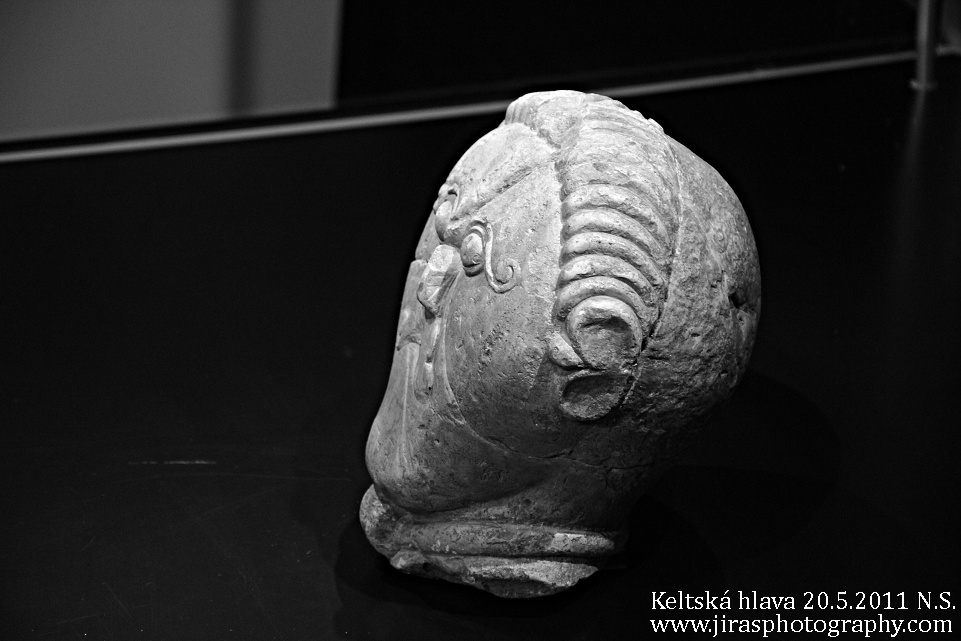 Keltska hlava nove straseci 2011 (15)