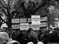 Lípy Demonstrace, 9.10 (19)