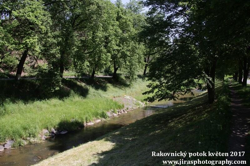 Rakovnický potok, Pustověty Tomáš Jiras (21)