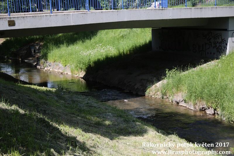 Rakovnický potok, Pustověty Tomáš Jiras (22)
