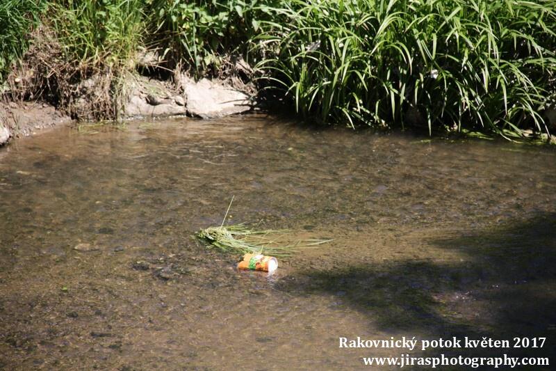 Rakovnický potok, Pustověty Tomáš Jiras (24)