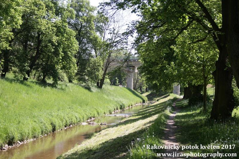 Rakovnický potok, Pustověty Tomáš Jiras (27)
