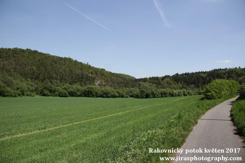 Rakovnický potok, Pustověty Tomáš Jiras (44)