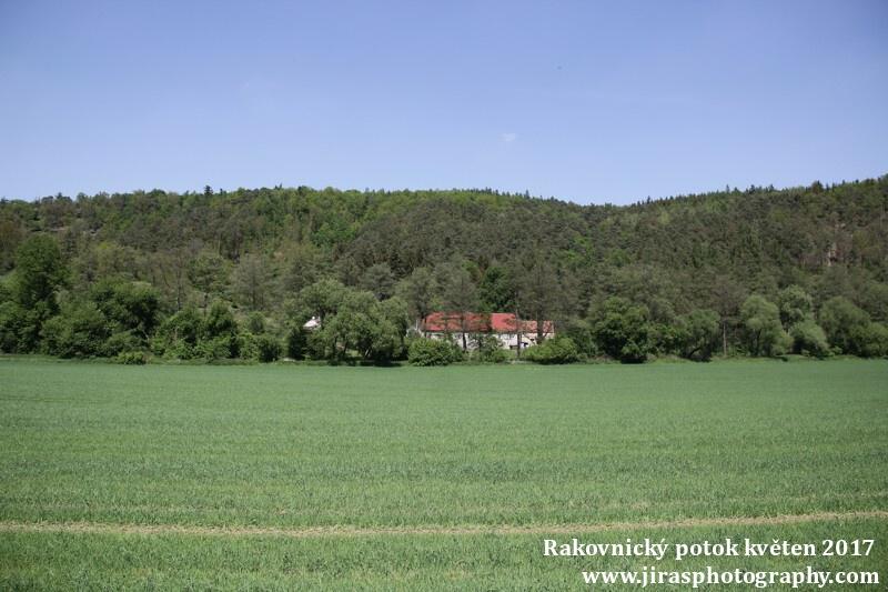 Rakovnický potok, Pustověty Tomáš Jiras (45)