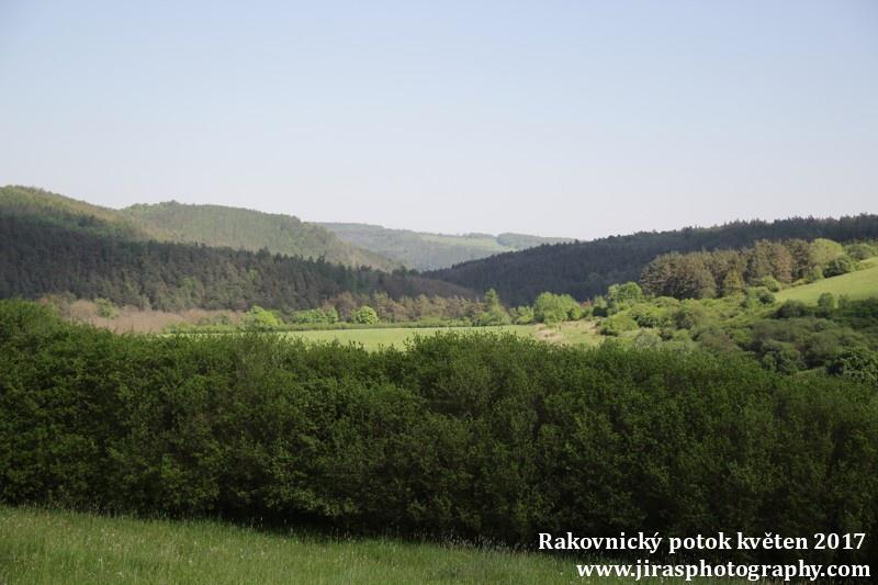 Rakovnický potok, Pustověty Tomáš Jiras (59)