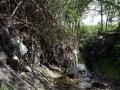 Strašecký potok (3)