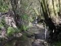 Strašecký potok (8)
