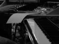ViVS Studio (3)